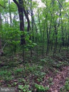 Land for Sale at Moormont Rd Rapidan, Virginia 22733 United States