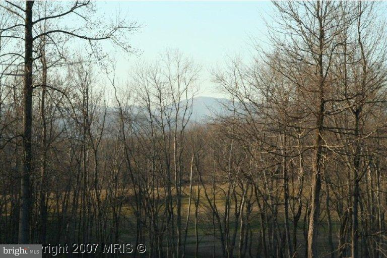 Land for Sale at Repton Mill Rd Aroda, Virginia 22709 United States