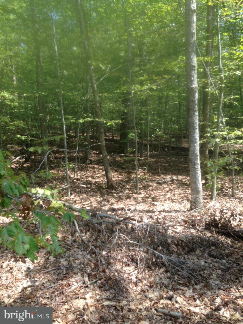 Additional photo for property listing at 5330 Bennett Brae Pl  La Plata, Maryland 20646 United States