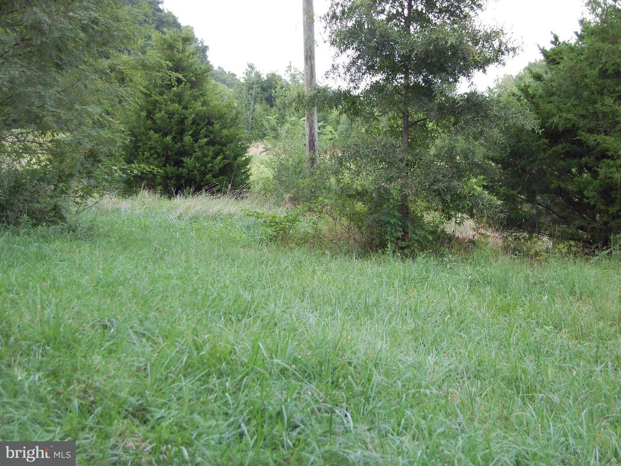 Single Family for Sale at 3432 Thompsons Mill Rd Goldvein, Virginia 22720 United States