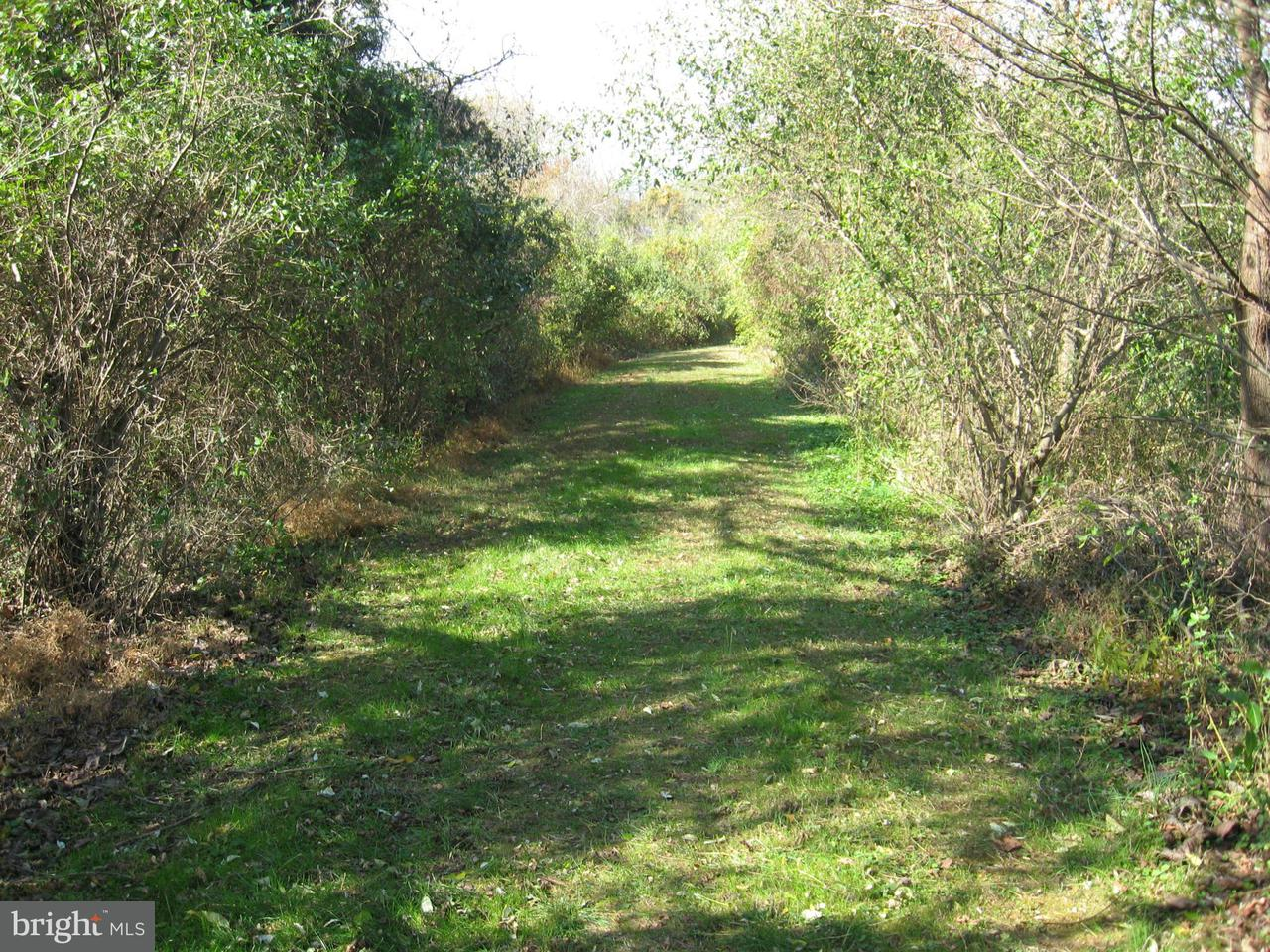 Additional photo for property listing at Lot 126 And Lot 127 Codjus Dr  Rising Sun, Maryland 21911 United States