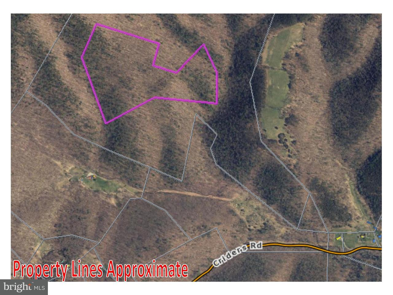 Land for Sale at 0 Criders Rd Criders, Virginia 22820 United States