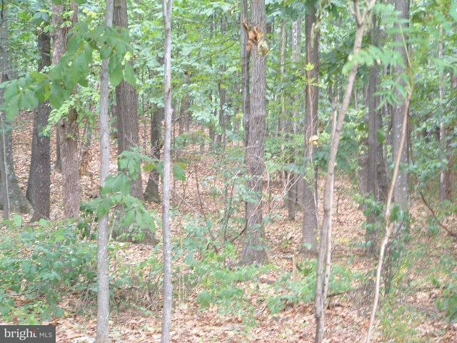 Land for Sale at Lot 126 Bow Wood Trail Winchester, Virginia 22602 United States