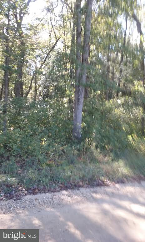 Land for Sale at 0 Trunk Line Rd Henderson, Maryland 21640 United States