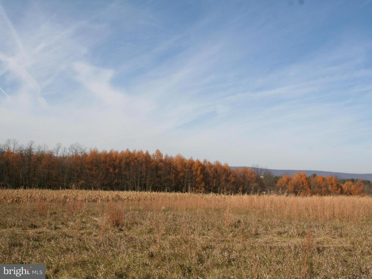 Additional photo for property listing at Colonel Fetters Road  Clearville, Pennsylvania 15535 United States