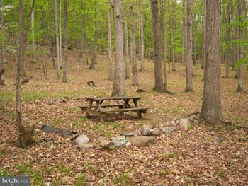 Additional photo for property listing at Senica Ridge Road  Great Cacapon, West Virginia 25422 United States