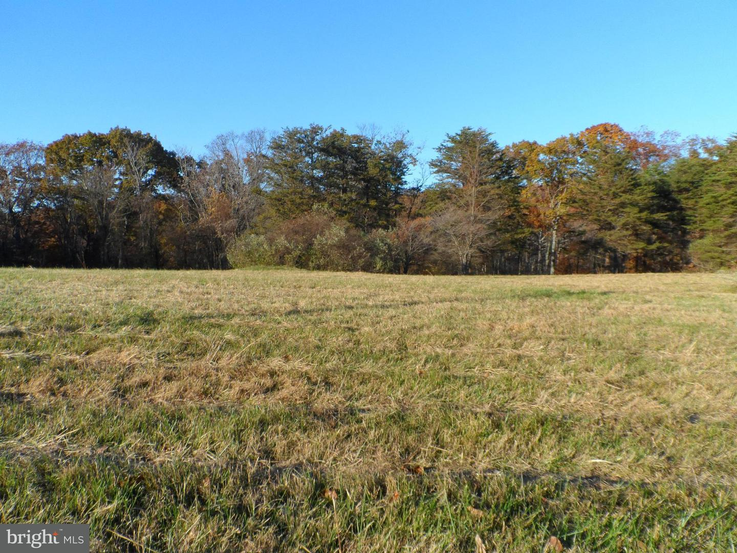 Land for Sale at Carefree Ln Boyce, Virginia 22620 United States