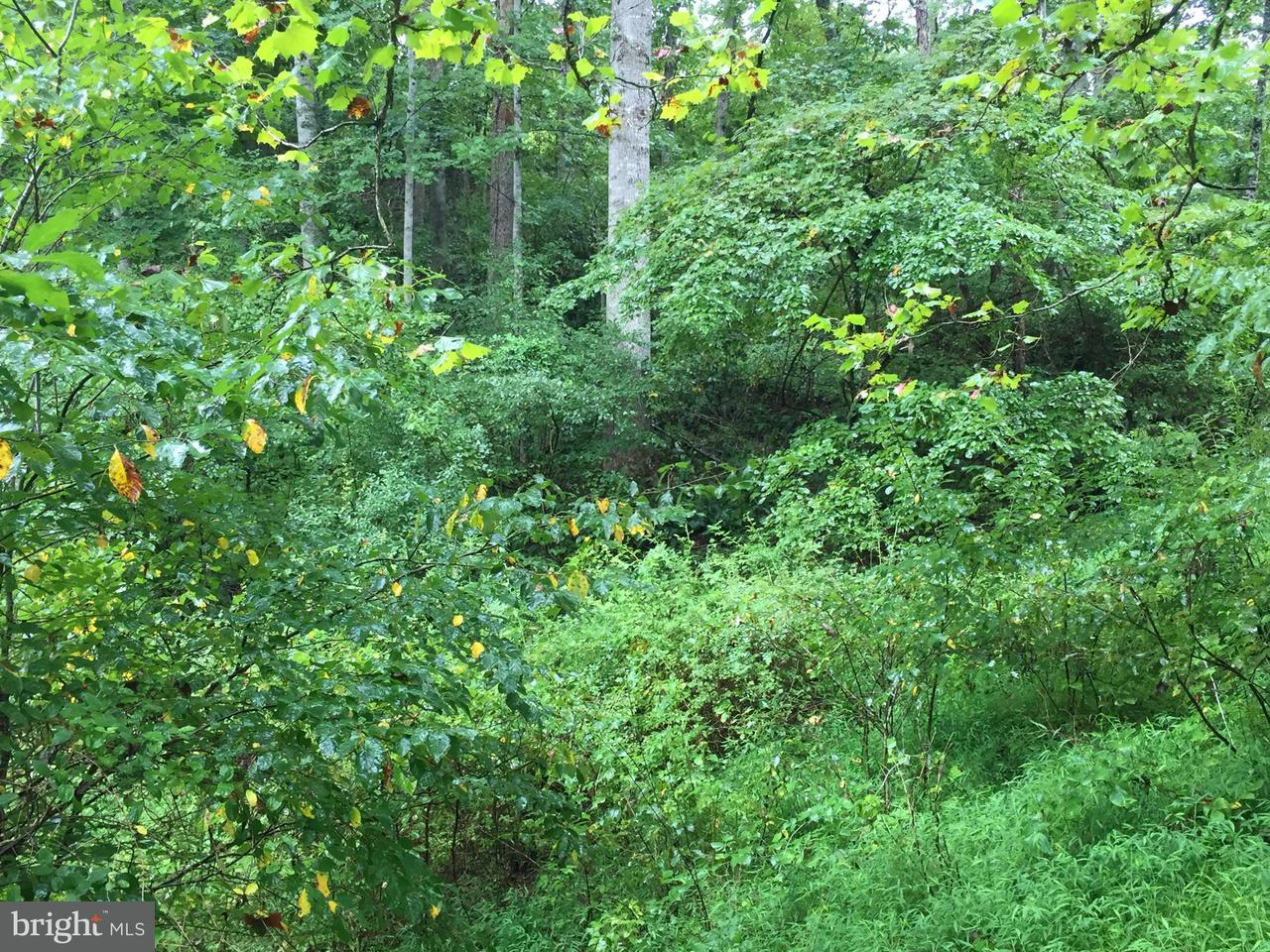 Land for Sale at Bluegrass Ln Woodville, Virginia 22749 United States
