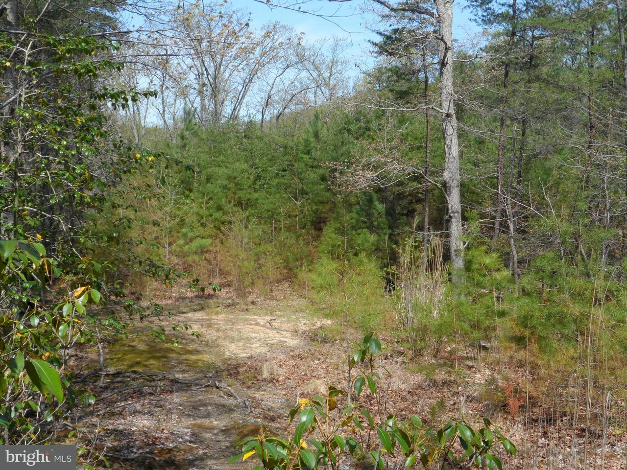 Additional photo for property listing at 2450 Jurallo Ct  Lusby, Maryland 20657 United States