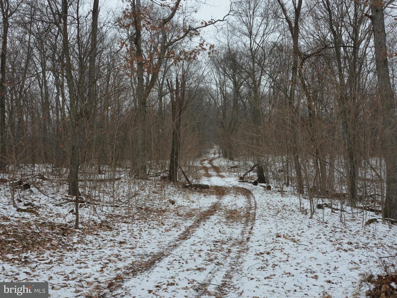 Land for Sale at Lot 5 Polecat Hollow Rd Hopewell, Pennsylvania 16650 United States
