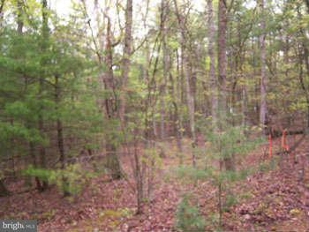 Additional photo for property listing at Transylvania Av.  Berkeley Springs, West Virginia 25411 United States
