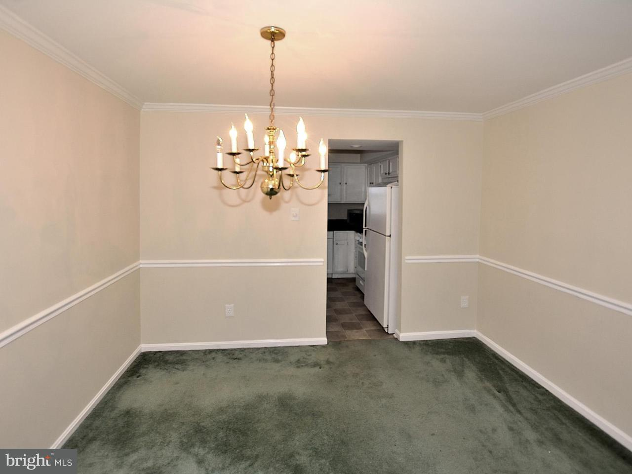 Additional photo for property listing at 7102 Captains Cove Court 7102 Captains Cove Court Alexandria, 弗吉尼亞州 22315 美國