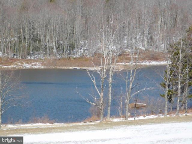 Land for Sale at 23 Waterfront Davis, West Virginia 26260 United States