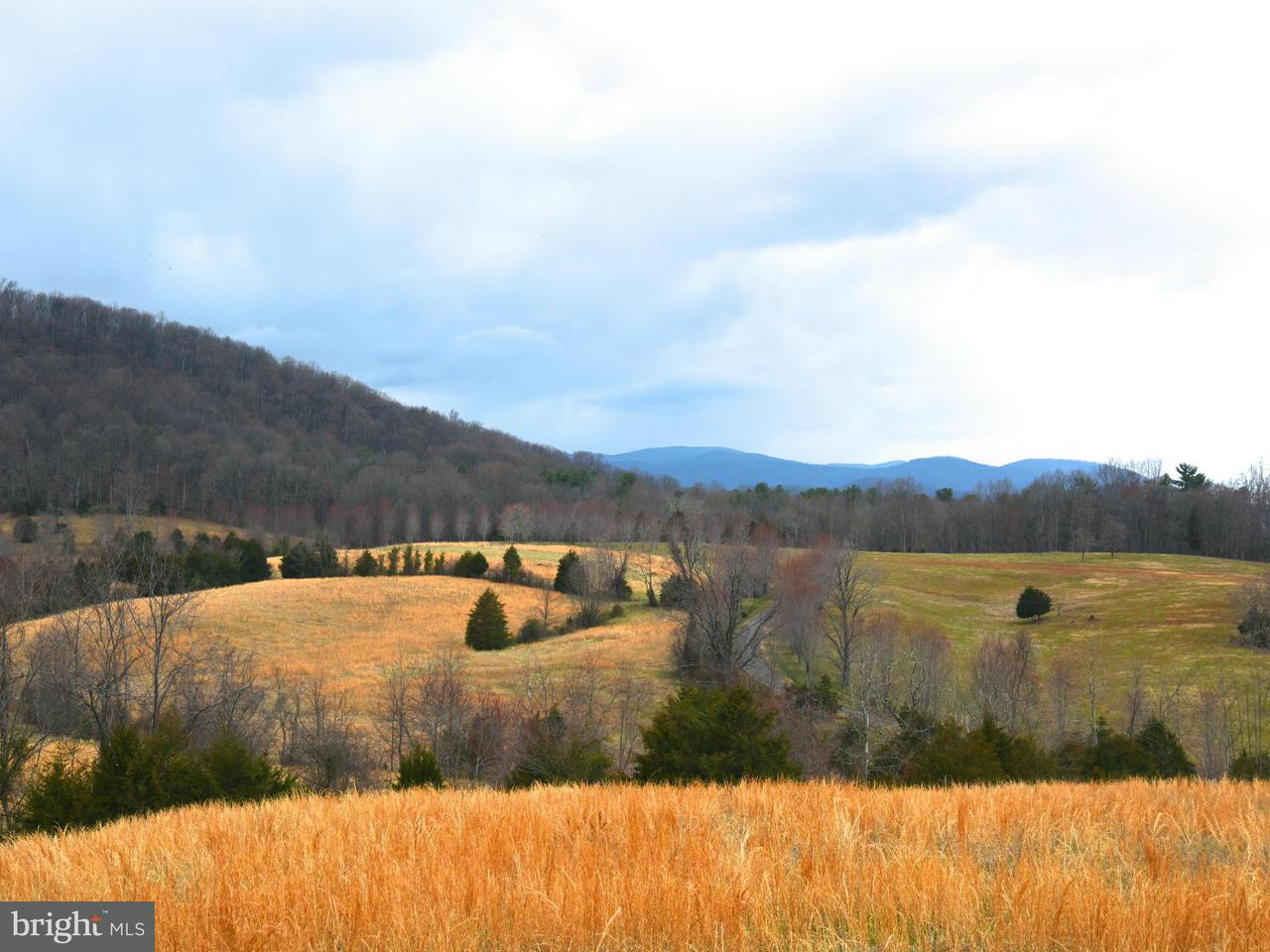Land for Sale at 13104 Major Brown Dr Sperryville, Virginia 22740 United States