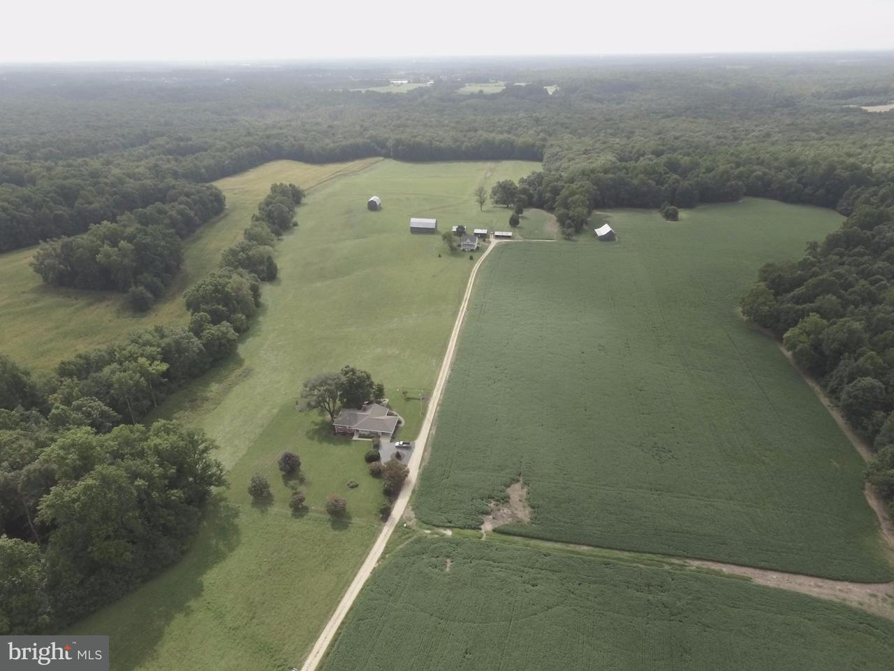 Farm for Sale at 13795 Hemming Place 13795 Hemming Place Waldorf, Maryland 20601 United States