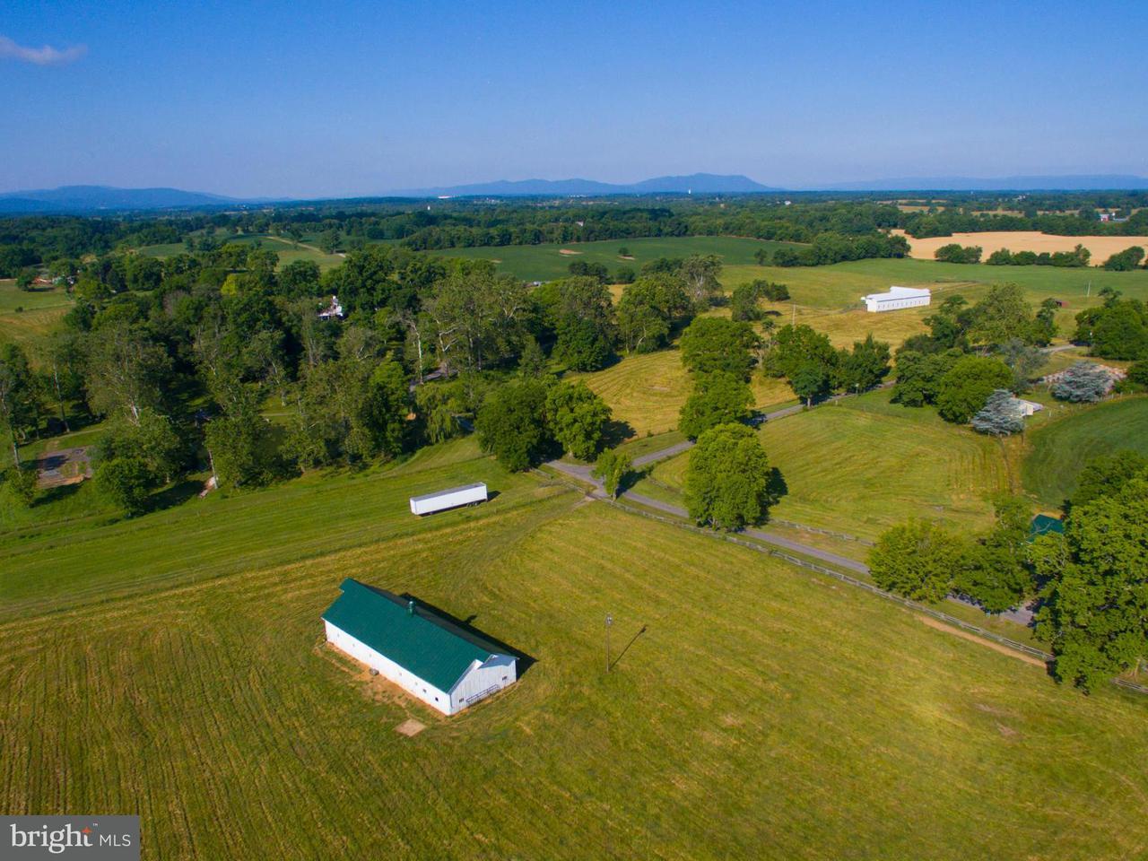 Additional photo for property listing at 466 Montana Hall Ln S 466 Montana Hall Ln S White Post, 弗吉尼亞州 22663 美國