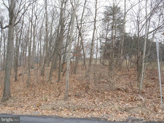 Land for Sale at 32 Theodore Dr Chambersburg, Pennsylvania 17202 United States