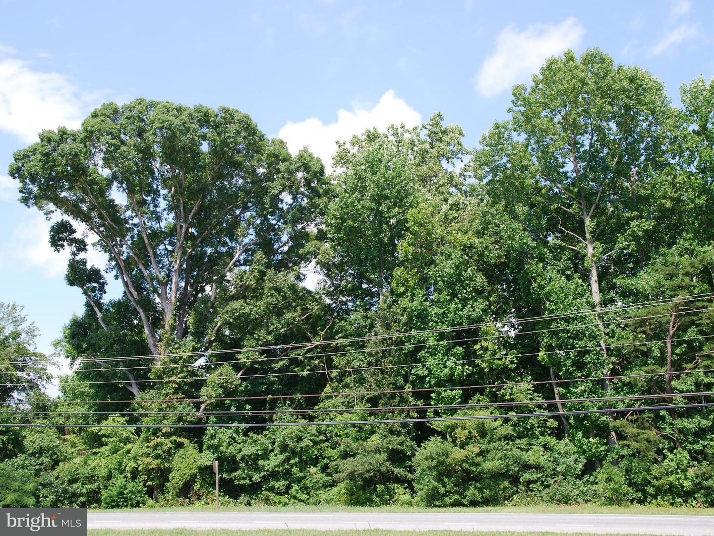 Additional photo for property listing at Three Notch Rd  Hollywood, Maryland 20636 United States