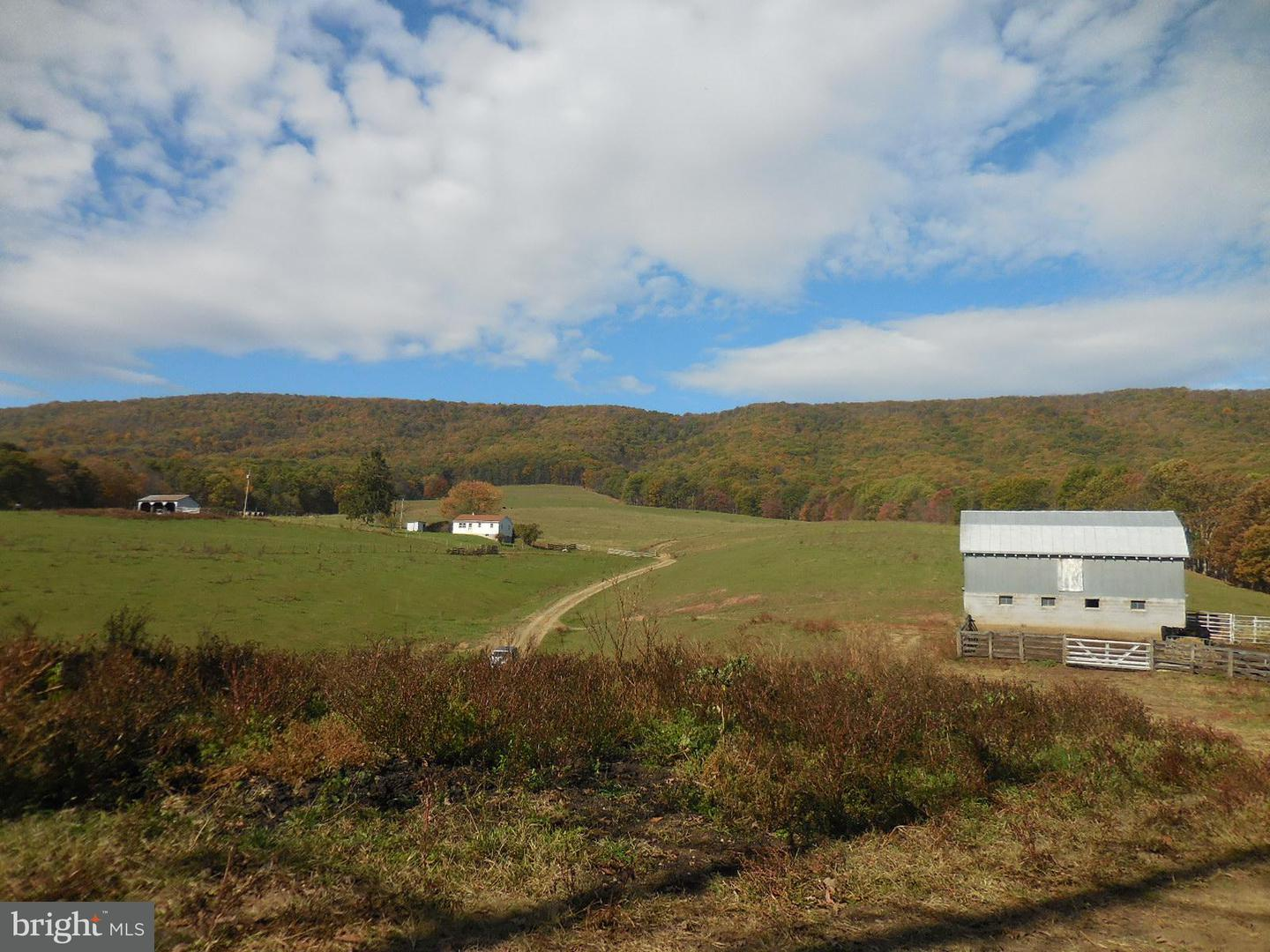 Land for Sale at 632 Arkansaw Rd Baker, West Virginia 26801 United States