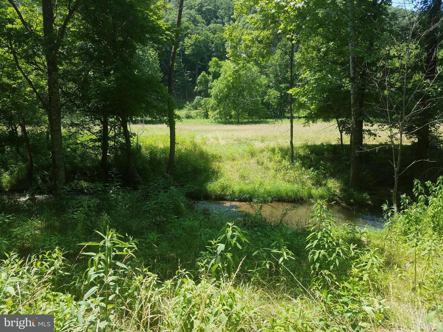 Land for Sale at Martin Rd Lahmansville, West Virginia 26731 United States