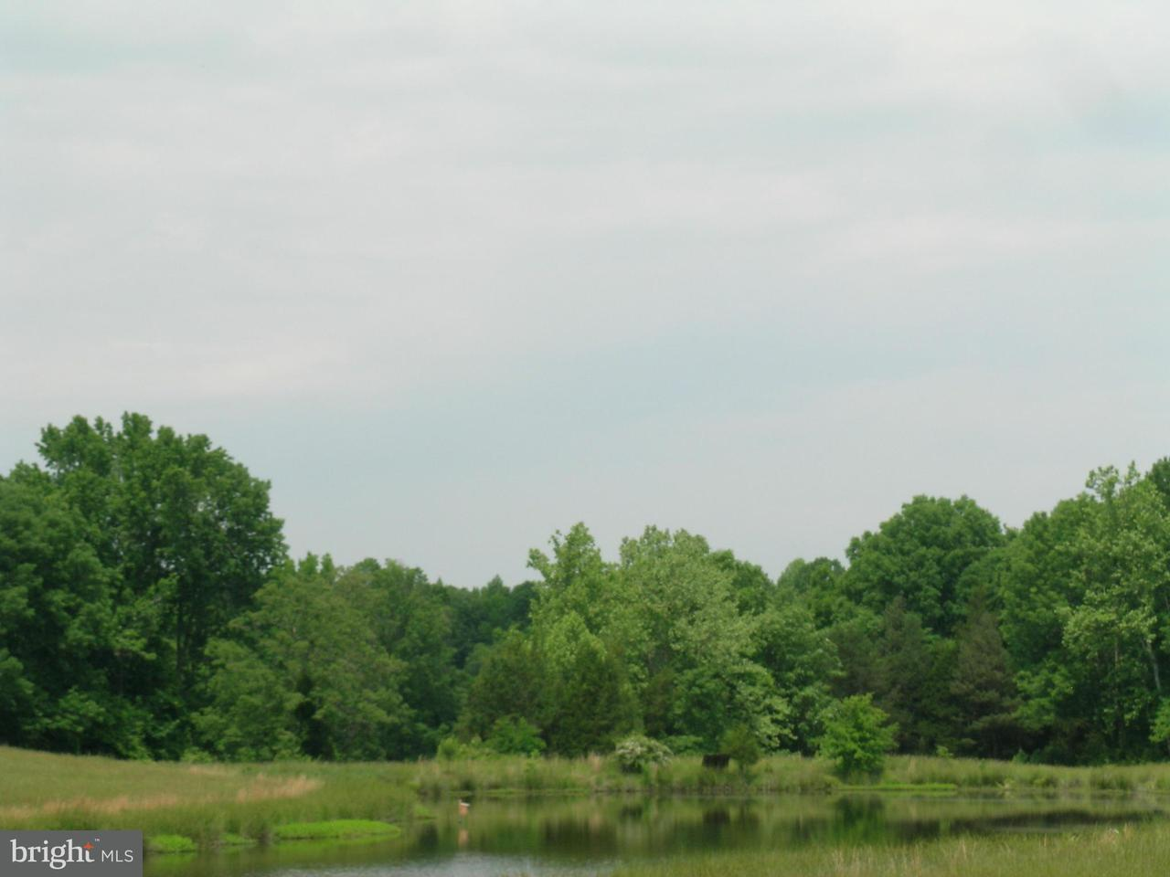 Additional photo for property listing at 2 Aeolian  Bumpass, Virginia 23024 United States