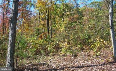 Land for Sale at Deer Run Rd Berkeley Springs, West Virginia 25411 United States