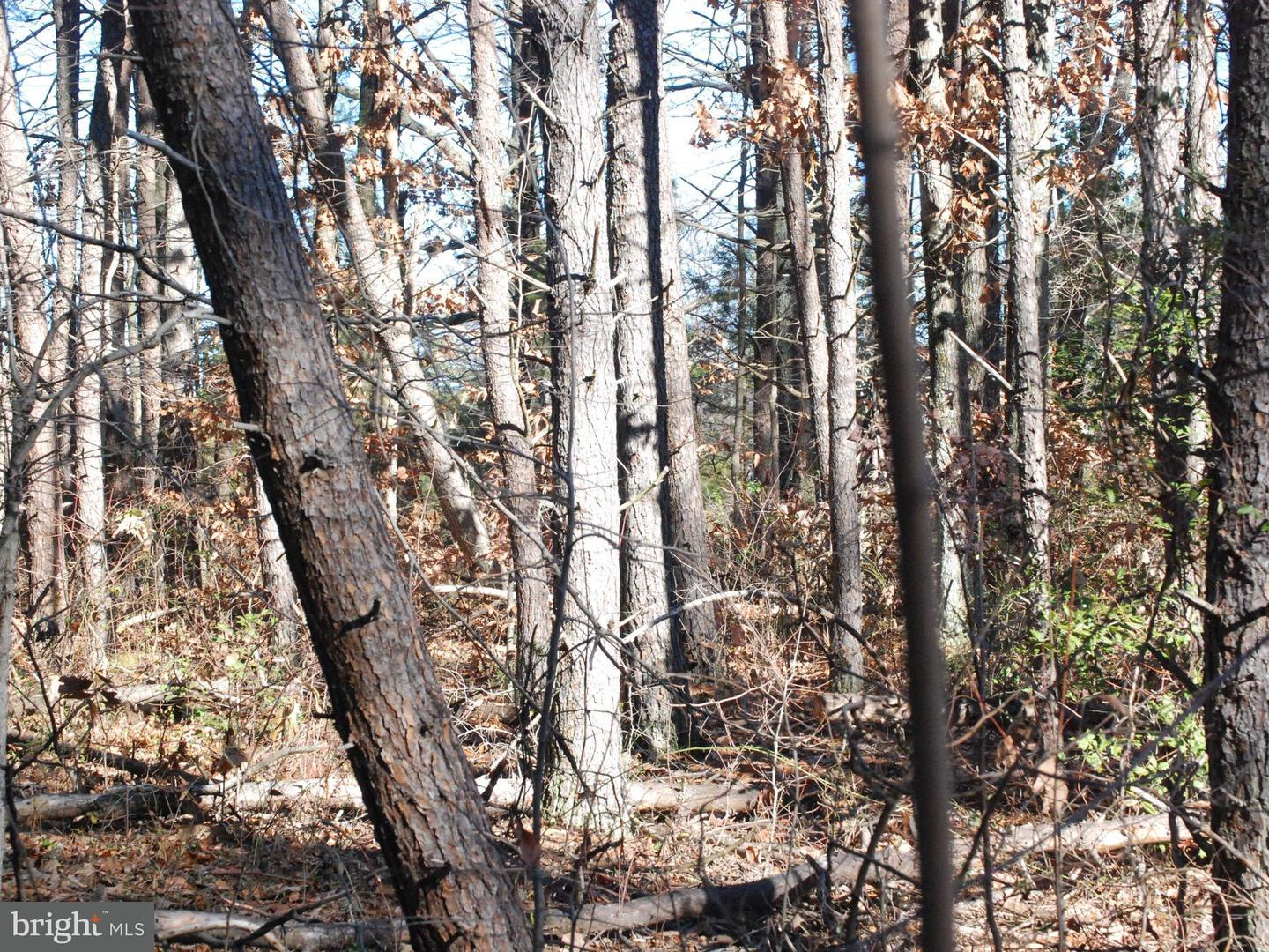 Land for Sale at Unknown Richardsville, Virginia 22736 United States