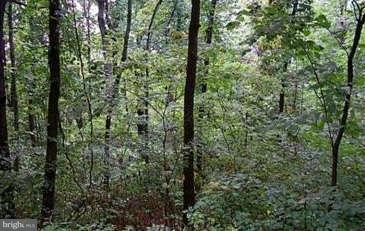 Land for Sale at 75 Riley Ct Front Royal, Virginia 22630 United States