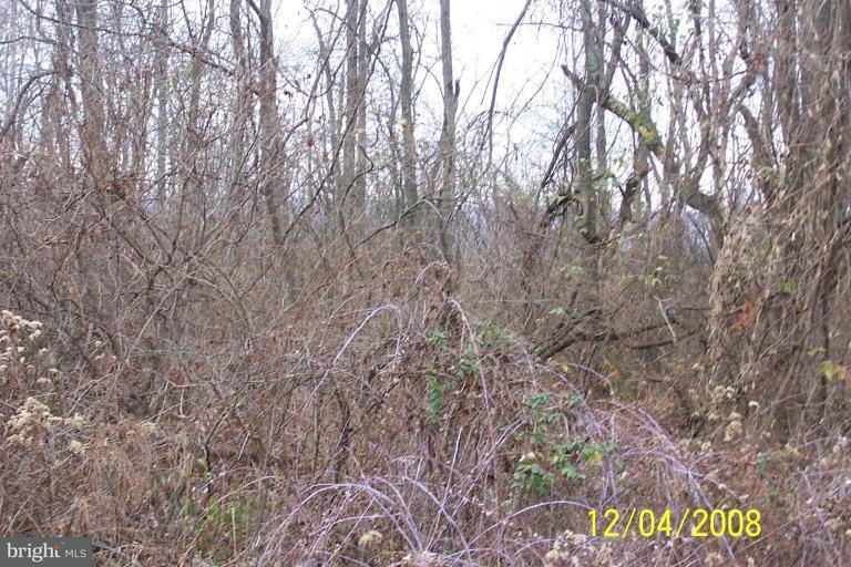 Land for Sale at Lot 1c Cito Road Mc Connellsburg, Pennsylvania 17233 United States