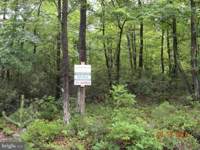 Additional photo for property listing at Lot 13 Great Mountain Ln  Winchester, Virginia 22602 United States