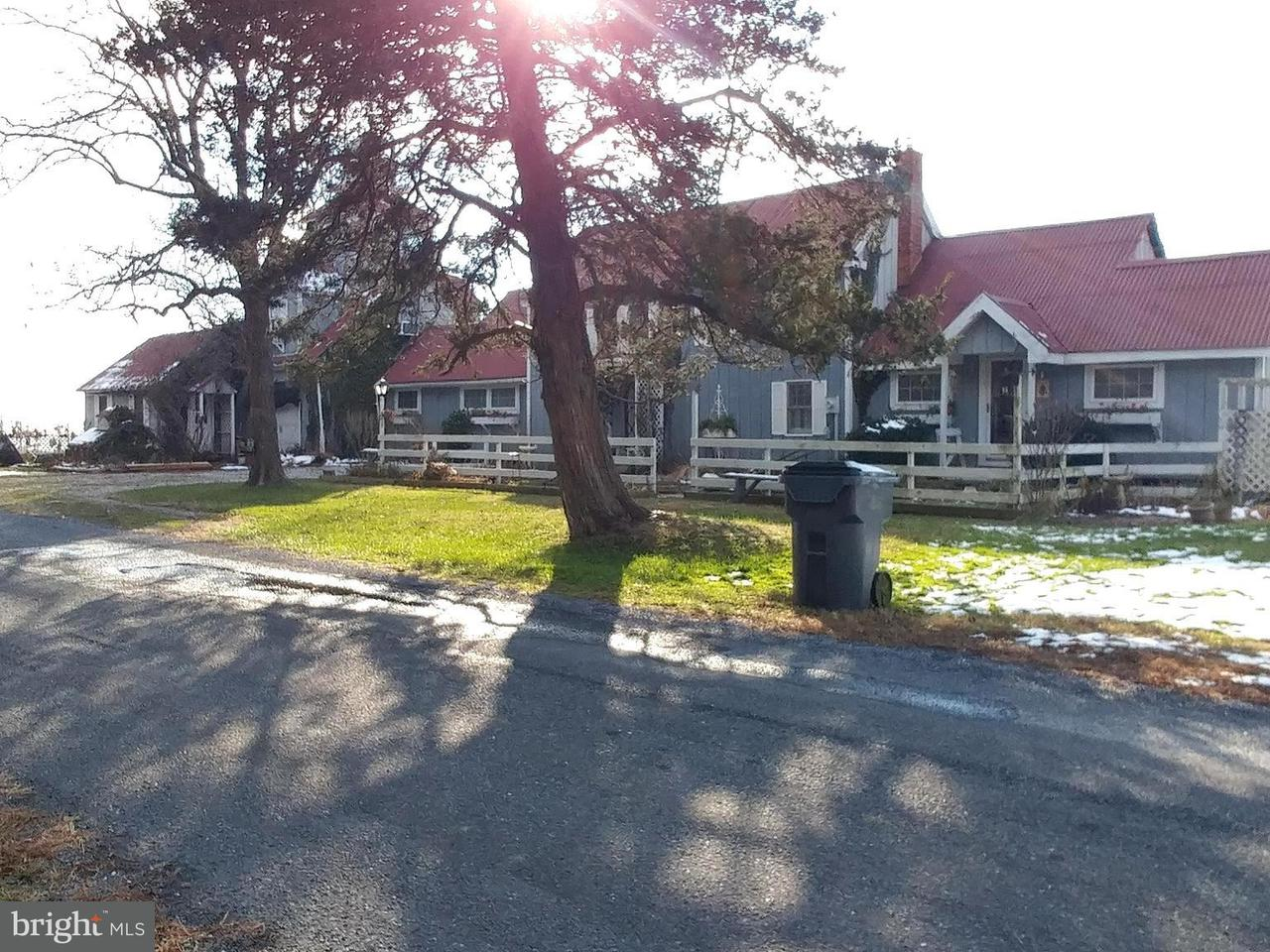 Additional photo for property listing at 3858 Punch Island Road 3858 Punch Island Road Taylors Island, Maryland 21669 United States