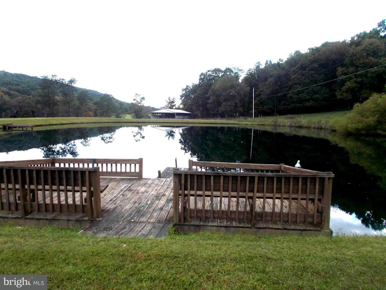 Fattoria per Vendita alle ore 2654 Penneroil Road 2654 Penneroil Road New Creek, Virginia Occidentale 26743 Stati Uniti