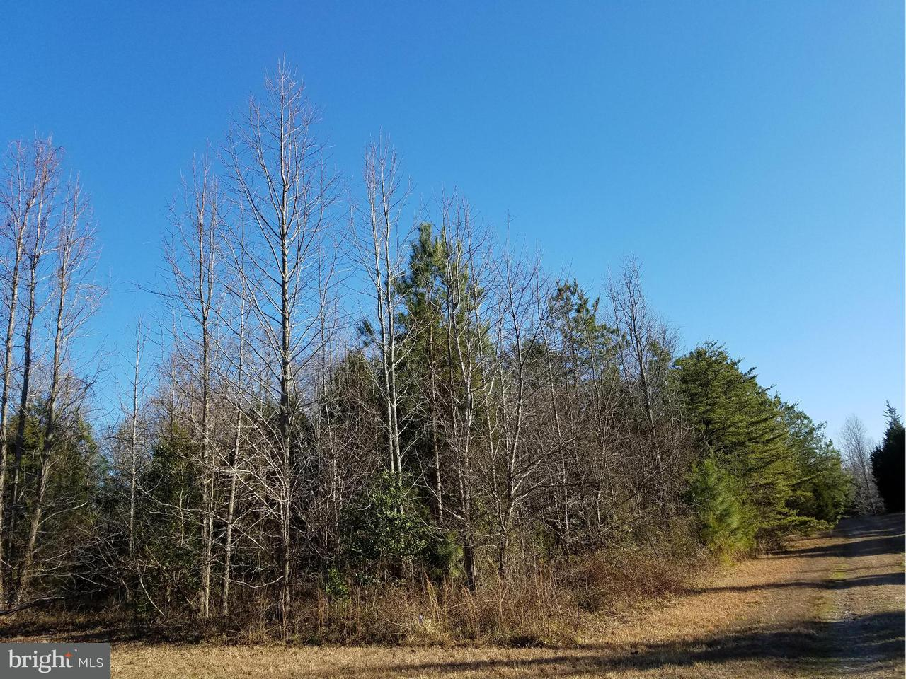 Additional photo for property listing at 0 Rose Mount Rd - Fronts On 635  Hustle, Virginia 22476 United States