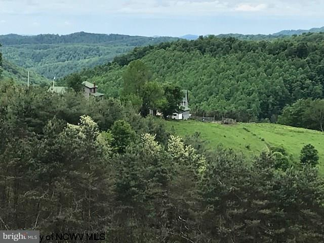 Farm for Sale at 677 Tree Farm Rd Eglon, West Virginia 26716 United States