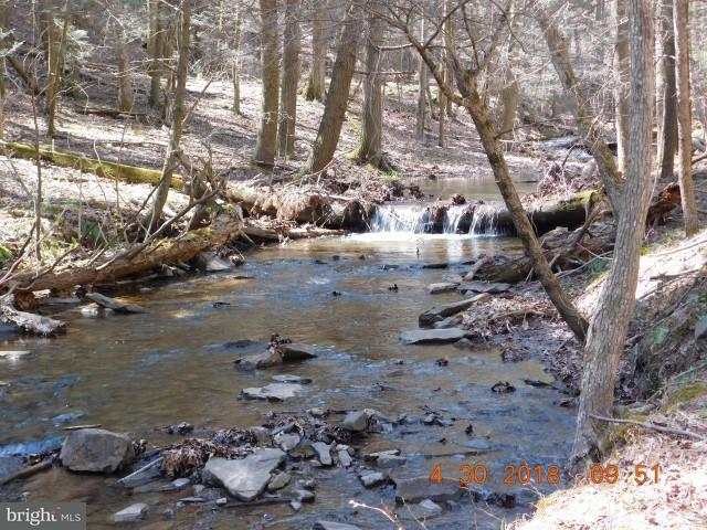 Land for Sale at 34 Off Crtton Owl Hollow Rd Bloomery, West Virginia 26817 United States