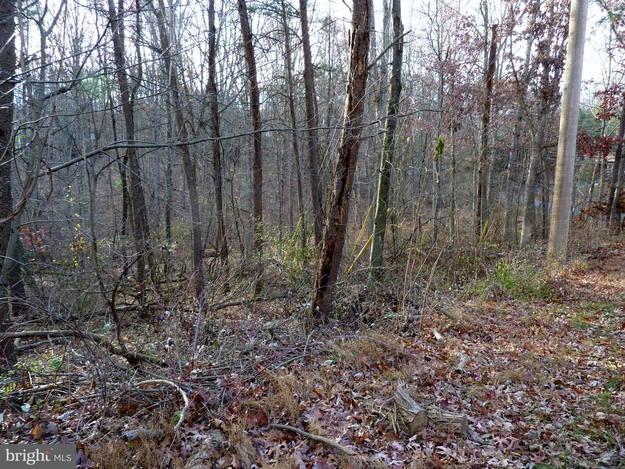 Land for Sale at 1503 Lakeview Dr Cross Junction, Virginia 22625 United States