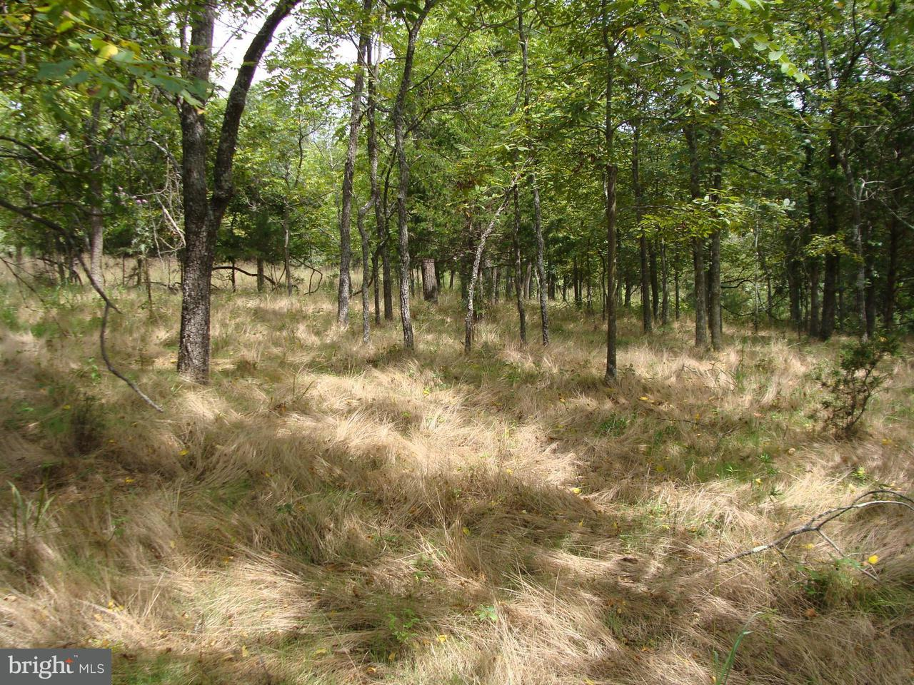Land for Sale at Lot 3 Lower Vista View Ln Arthur, West Virginia 26847 United States