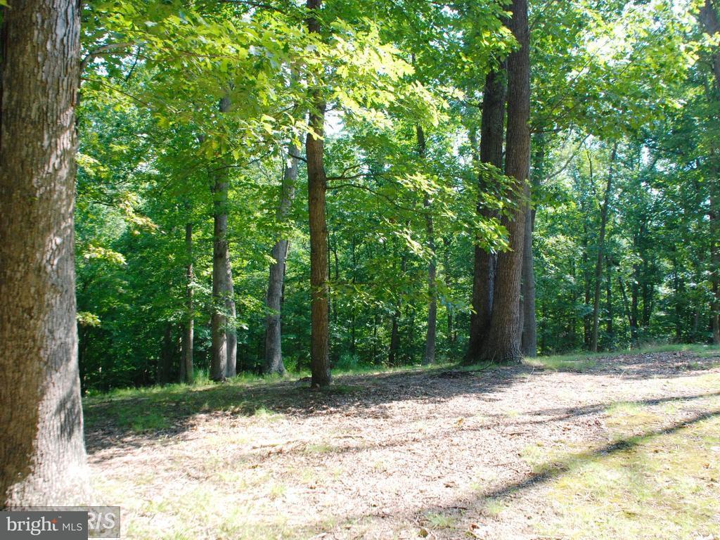 Land für Verkauf beim 11013 Riverwood Drive 11013 Riverwood Drive Rockville, Maryland 20854 Vereinigte Staaten
