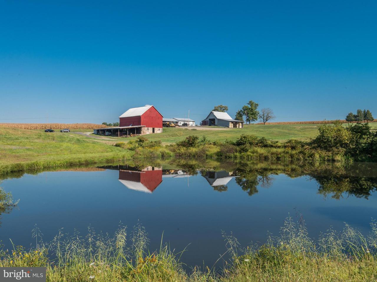 Farm for Sale at 13825 Howard Road 13825 Howard Road Dayton, Maryland 21036 United States