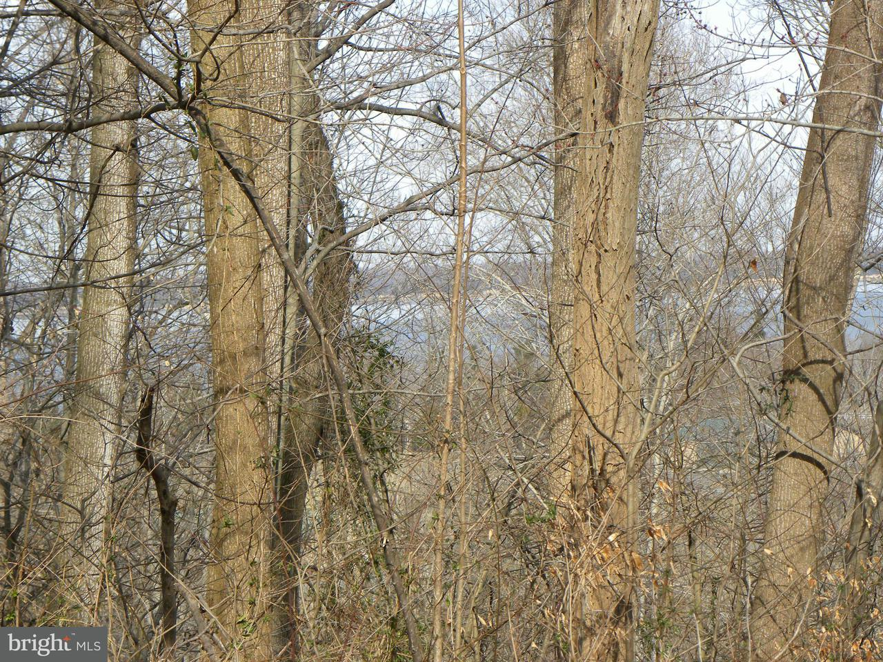 Additional photo for property listing at Ridgeview Drive Ridgeview Drive King George, Virginia 22485 United States