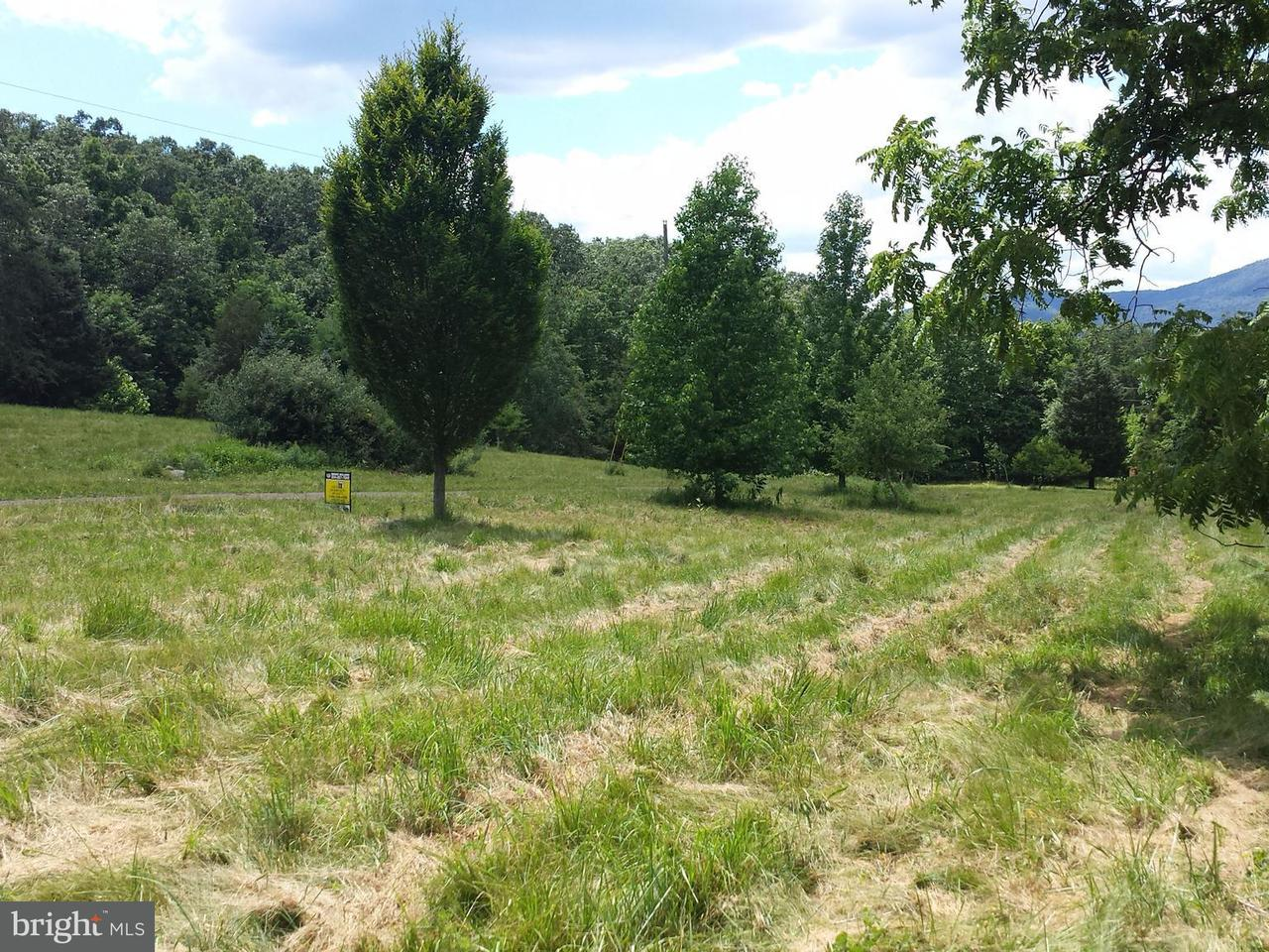 Land for Sale at West Brook Road Lot E Old Fields, West Virginia 26845 United States