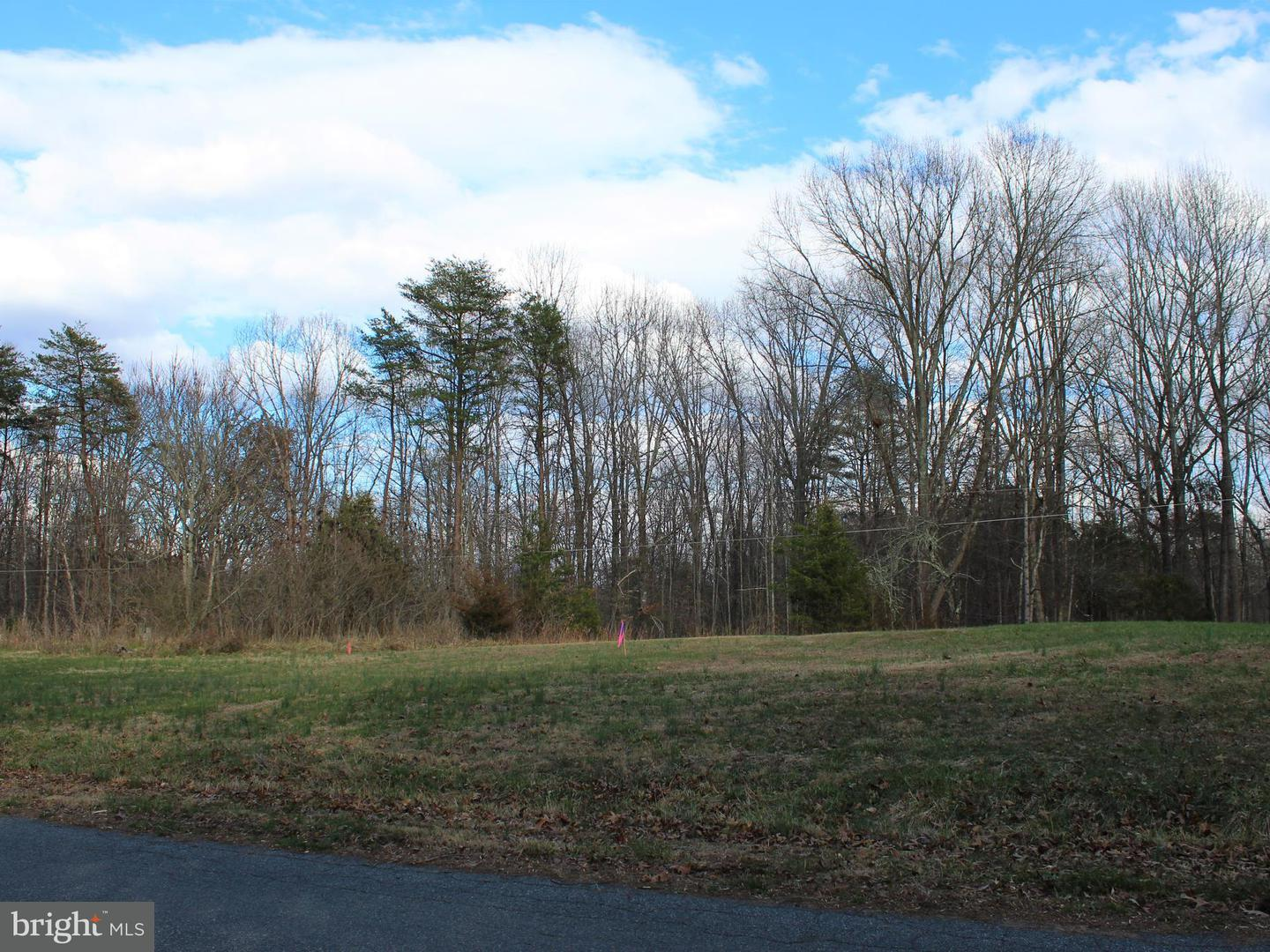 Land for Sale at Tinsley Dr Radiant, Virginia 22732 United States