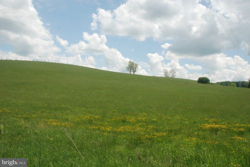 Land for Sale at Breedlove Eglon, West Virginia 26716 United States
