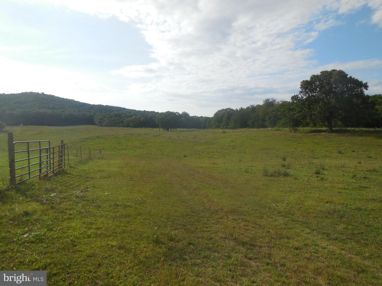 Land for Sale at Pinewoods Rd Quicksburg, Virginia 22847 United States