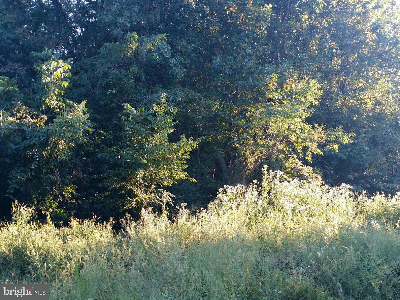 Land for Sale at 0 Cannery Road Bowling Green, Virginia 22427 United States
