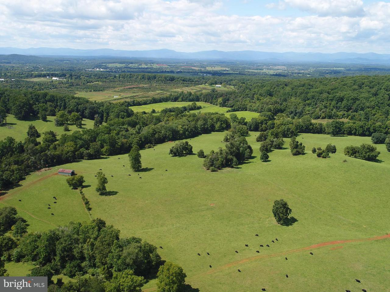 Land for Sale at 0 Chicken Mountain Rd Gordonsville, Virginia 22942 United States