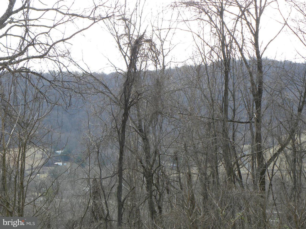 Farm / Hof für Verkauf beim 172 Appalachian Lane 172 Appalachian Lane Linden, Virginia 22642 Vereinigte Staaten