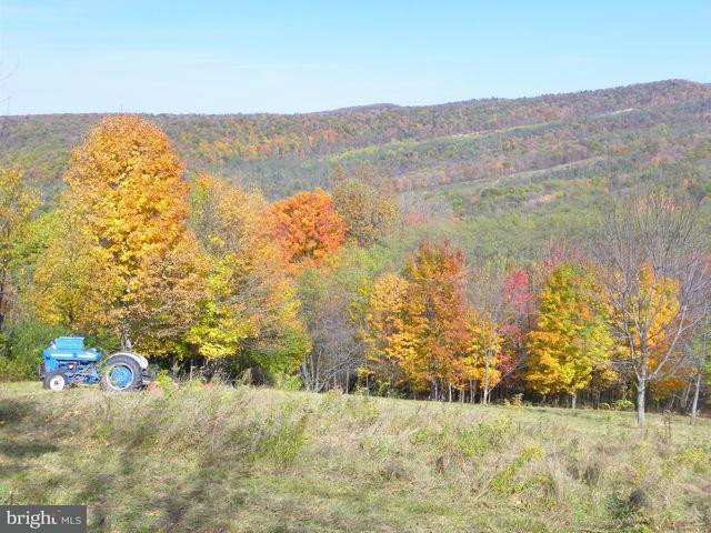 Land for Sale at Rt 42 Elk Garden, West Virginia 26717 United States