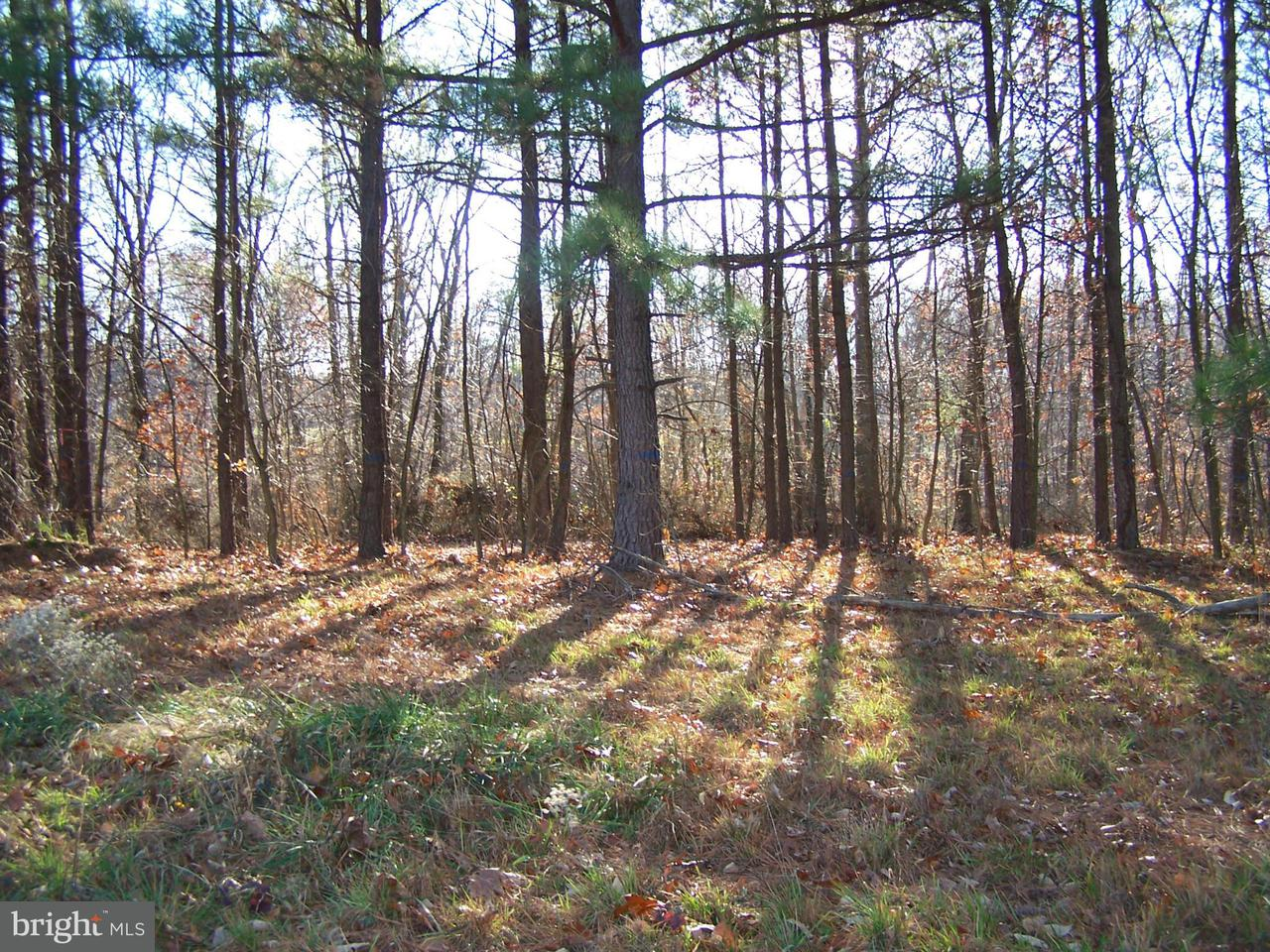 Additional photo for property listing at Fairview Oaks Lane  Berkeley Springs, West Virginia 25411 United States