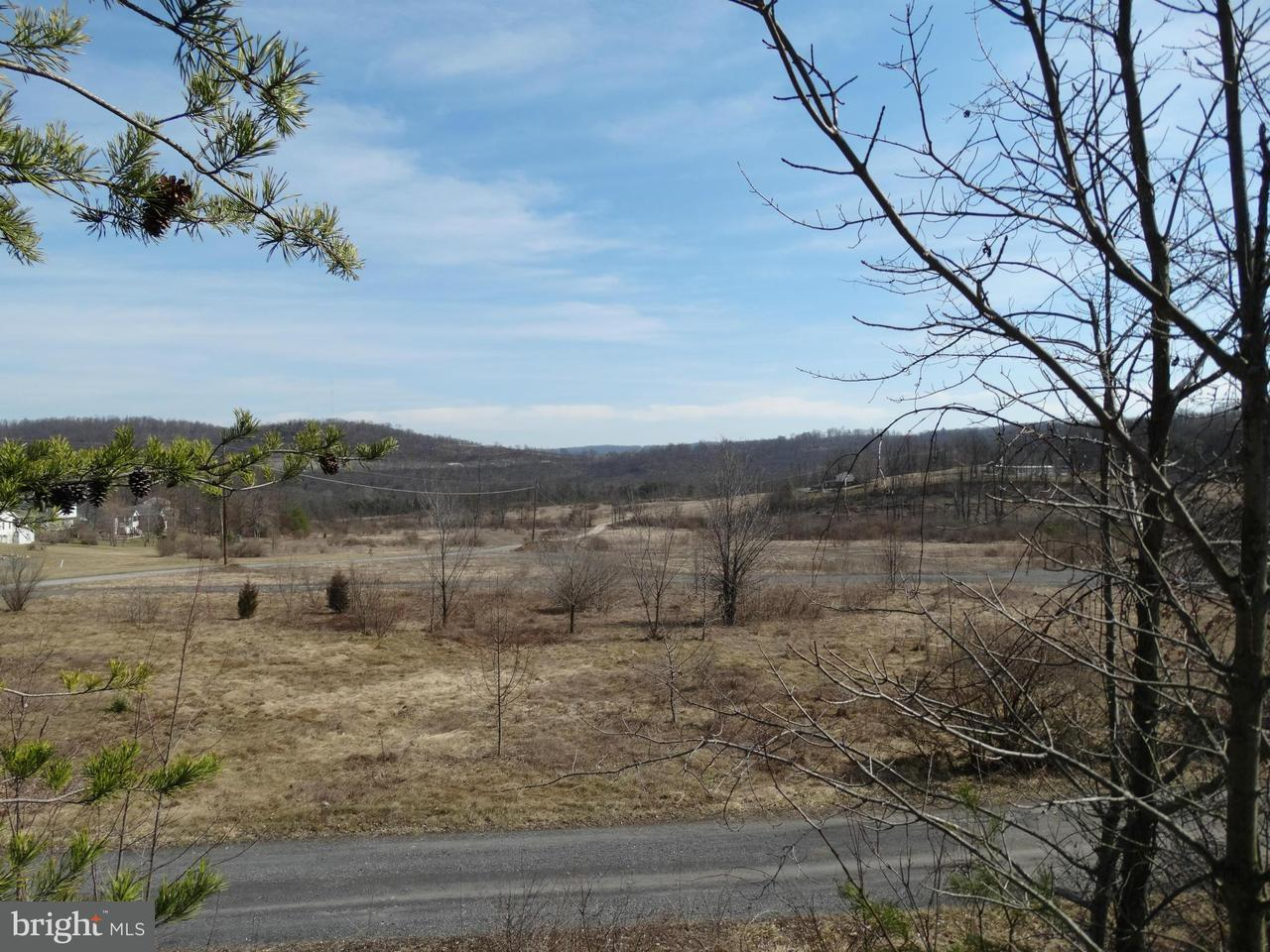 Land for Sale at Lingenfelter Drive Bedford, Pennsylvania 15522 United States